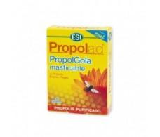 Propolaid Trerpatdiet Propolgola honey chewable 30 tablets