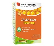 Forté Pharma Royal Jelly 1000mg 20 vials