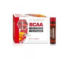 Marny's BCAA glutamina 20 viales