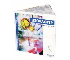 Biological child Lisobacter 3 bottles of 30ml. Immune System.