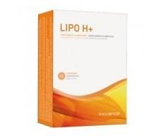 Lipo Inovance Ysonut H + 60 tabs