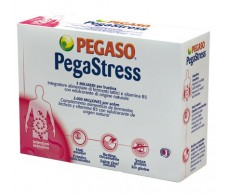 Pegaso PegaStress 18 envelopes