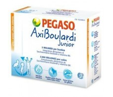 Pegaso Junior AxiBoulardi 14 envelopes