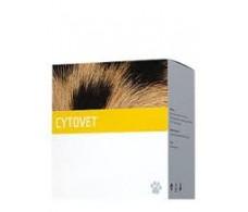 EneryVet Cytovet 90 capsules