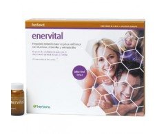 Herbora Enervital Royal Jelly 20 ampoules
