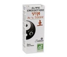 5 Saisons Elixir Nº6 Yin de la Tierra (melisa) 50 ml