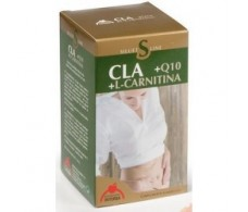 Intersa Bisiluet cla 45 pearls