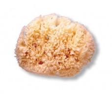 Large natural sponge. Suavinex