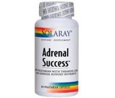 Solaray Adrenal Success 60 capsulas