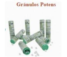 Praxis Gránulos Potens 4 gramos. (tubo homeopático)