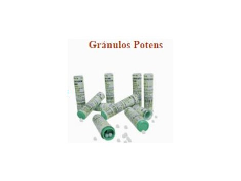 Granules Praxis Potens 4 grams. (has homeopathic)