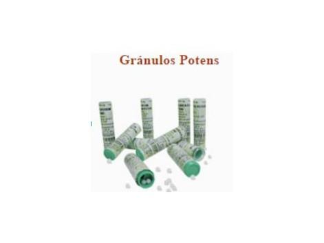 Granules Praxis Potens 4 grams. (has homeopathic)
