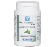 Nutergia Ergyprotect Now Conf 60 capsules