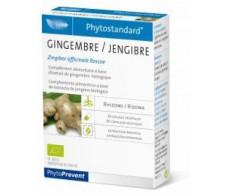 Ginger 20 capsules Pileje Phytostandard