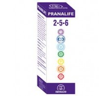 Equisalud Pranalife 2-5-6