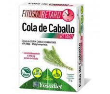 Fitosol Ynsadiet Horsetail (diuretic) 30 capsules.