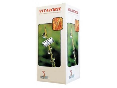 Ginkgo Lusodiete Vitaforte + 250ml. Nutrinat