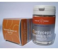 Cordyceps (Cordyceps sinensis). 62 capsules