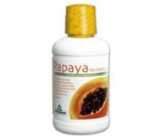 Papaya Fermentada 500ml. Specchiasol