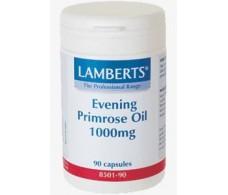 Lamberts Aceite de Primula 1000mg. 90 cápsulas.