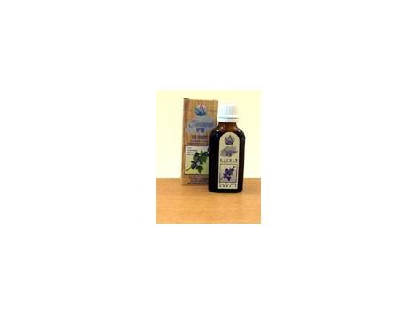 Elixir No 10 kidney yin (grosellero black) (relaxes and removes)