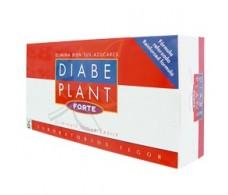 Tegor Diabeplant Forte 60 capsulas
