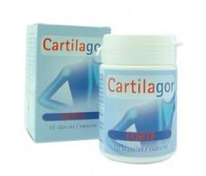 Tegor Cartilagor Forte 40 capsules