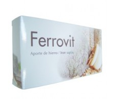 Tegor Ferrovit 30 comprimidos