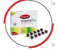 Ceregumil Vitamix plus 30 capsules