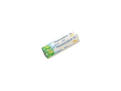 Boiron Homeodent chlorophyll toothpaste 75ml.