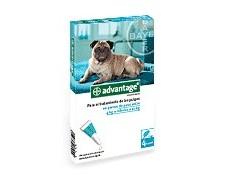 Advantage 100 perros de 4-10 kg.  4 pipetas