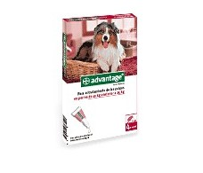 Advantage 250 for dogs 10-25 kg. 4 pipettes