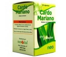 Cardo mariano microgranulos Neo 45 capsulas