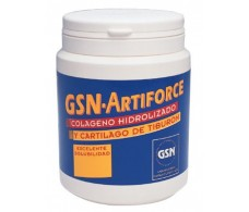 GSN Artiforce chocolate 300gr