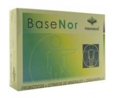 Basenor 60 capsulas - Internature