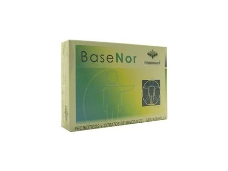 Basenor 60 capsules - Internature