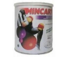 Mincartil 300 gr. Aminoacidos vegetales Soria Natural