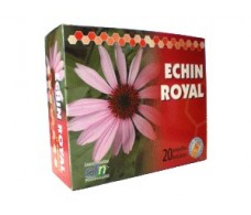 CFN Echin Royal 20 ampollas.