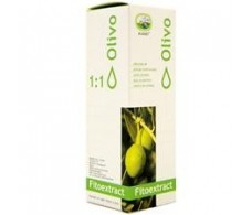 Eladiet Fitoextract Concentrate Olivo 50ml.