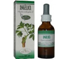 Soria Natural Extract of Angelica (diuretic, stress) 50ml.