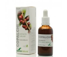 Soria Natural Extract Copalchi (hypoglycemic, febrifuge) 50ml.