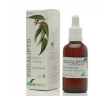 Soria Natural Eucalyptus extract (bronchitis, cold) 50ml.