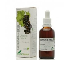 Soria Natural Extract of Grindelia (respiratory system) 50 ml.
