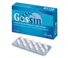 Masterdiet Gassin 20 cápsulas.