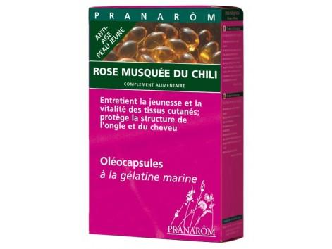 Pranarom Anti-Aging Rosehip Oil 40 Capsules.