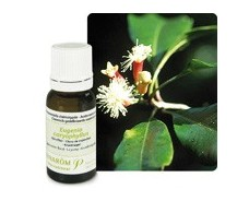 Pranarom Essential Oil Bio Cloves 10ml.