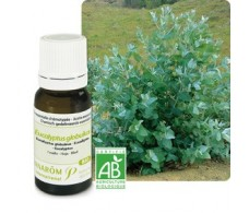 Pranarom Essential Oil Eucalyptus 10 ml.