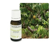 Pranarom Essential Oil Bio Ylang-Ylang 5ml.