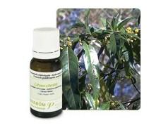 Pranarom Essential Oil Exotic Verbena Bio10ml.