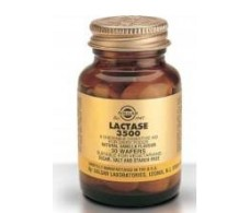 Solgar Lactase 3500 Vanilla 30 chewable tablets.